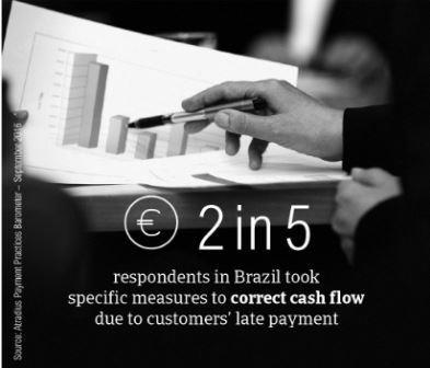 PPB Brazil fact box4