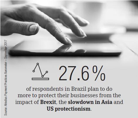 PPB Brazil fact box2