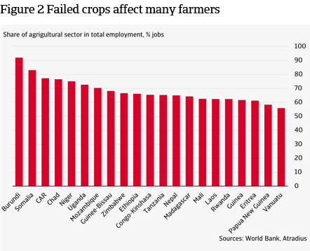Figure 2 Failed crops affect many farmers