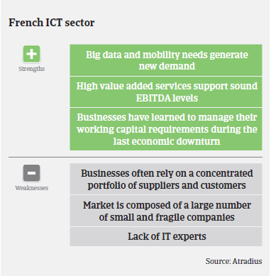 ICT industry France Strengths Weaknesses