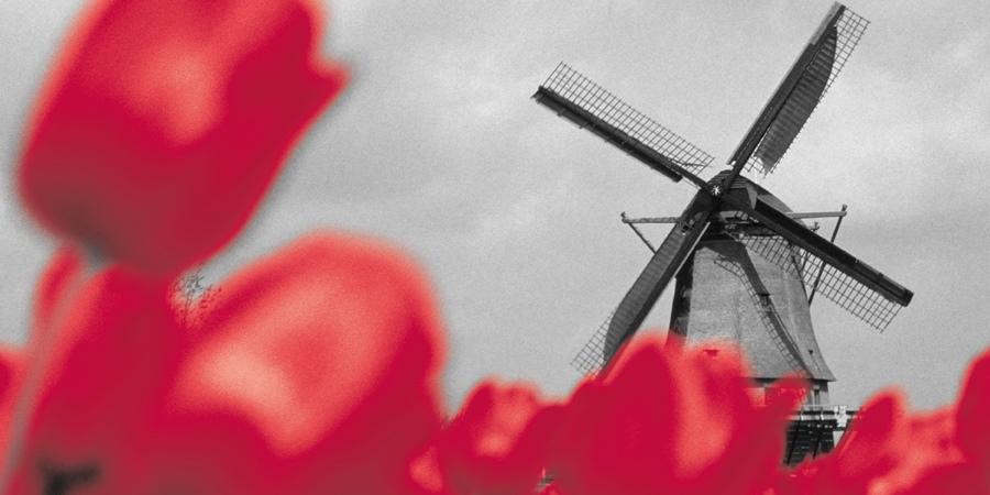 Netherlands windmil Atradius